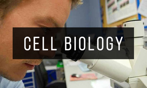 Cell-Biology